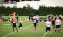 Here's a Sick One-Handed INT From Bengals Camp (Video)