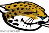 http://www.totalprosports.com/wp-content/uploads/2015/08/stoner-nfl-logos-jaguars-520x303.png