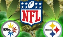 NFL Tells Weed-Legalization Group to Stop Using the Steelers Logo