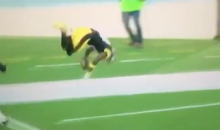 Antonio Brown Front Flips Into End Zone, Sticks the Landing (Video)
