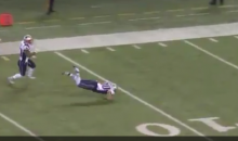 Danny Amendola Is Tackled By Teammate, Prevented From Punt-Return TD (Video)