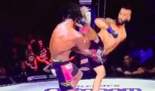 This Spinning Back Kick Leads to a Decisive Knockout (Video)
