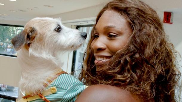 serena williams dog