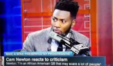 "Ryan Clark On Why Cam Is Hated: ""It's Not About Race, It's About Culture."" (Video)"