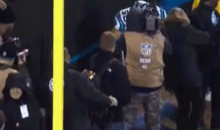 Fan Falls Out Of The Stands Trying to Get Kuechly Pick-6 TD Ball (Video)