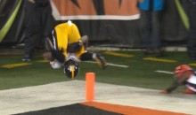 Martavis Bryant With The Catch Of The Year (Video)