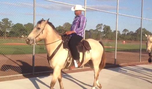 cespedes horse mets