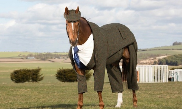 horse wearing a three-piece suit 2