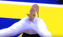This Dog's Halftime Show Was the Highlight of the Villanova-Marquette Game (Video)