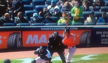 John Oliver Put Two Dudes in Ninja Turtles Costumes Behind Home Plate For the Yankees Home Opener (Pic + Video)