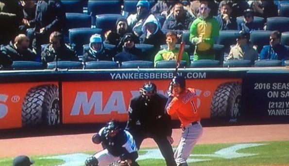 Ninja Turtles Yankee Stadium
