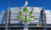 Marijuana Dispensary Wants To Pay $6 Million For Naming Rights Of Broncos' Mile High Stadium