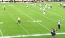 CFL Fan Invades Field, Eludes Security, Gets Clocked by Player (Video)