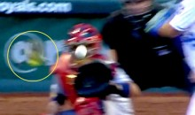 Cards Pitcher Adam Wainwright Almost Randy Johnson'd a Bird Last Night (Video)