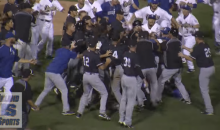 Minor League Baseball Players Brawl After Ump Tosses Player From The Game (Video)