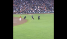 Giants Fan Runs Out on The Field; Gets Destroyed By Security (Video)
