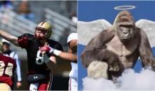 Boston College QB Dedicates Season To 'Harambe' The Fallen Gorilla