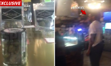 Cowboys RB Ezekiel Elliot Spotted Shopping In Weed Store (Video)