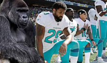 Harambe Kneels During National Anthem In Protest Of His Untimely Death