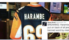 After 24-Hour Ban & Social Media Outrage, 'Harambe' Jersey Sales Allowed Again
