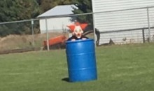 High School Soccer Coach Gets Fired After Dressing Up As a Clown During Practice