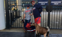 Indians Fans Bring Goats to Progressive Field to Curse Chicago Cubs