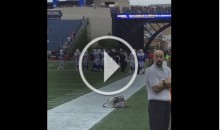 Bills & Patriots Have a Pregame Shoving Match (Video)
