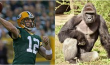 Aaron Rodgers Thanks People Who Voted For Him During The Election: 'It Was Between Me & Harambe'