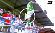 Soccer Player Jumps Into The Stands to Kick a Heckling Fan (Video)
