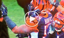 Vontaze Burfict Flips off Fans During Game After Beer Thrown at Him (Video)