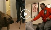 New York Giants DT Damon Harrison is NOT a Fan of Dogs (Video)