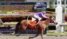 Horse Named 'Harambe' Wins Inaugural Race (Video)