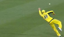 You Don't Need to Be a Cricket Fan to Appreciate How Amazing This Catch Was (Video)