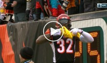 Bengals RB Jeremy Hill Scores TD, Proceeds to Disrespect Terrible Towel (Video)