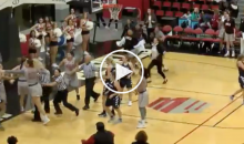 Fight Breaks Out During UNLV-Utah State Women's Basketball Game (Video)