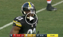 Steelers' Mike Mitchell Lets Off a High-Pitched Squeal During Tantrum (Video)