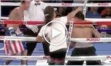 Spectator Takes Swing At Fighter During A Boxing Match (Video)