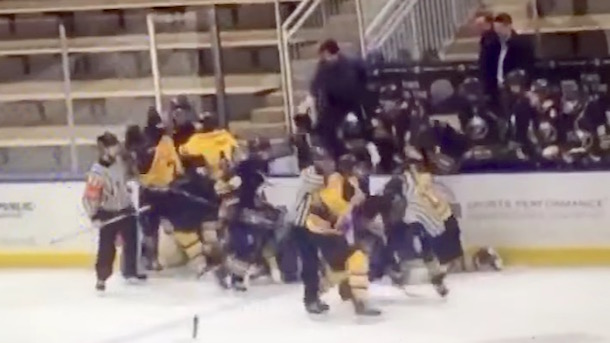 former nhl player andrew punches youth hockey player peters