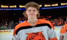 Behold the 2017 All Hockey Hair Team Top 10 (Video)