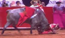 Mexican Bullfighter Gored in the Rectum (Video + Gruesome Pic)