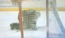 The Bruins Used a Civilian Backup Goalie During Practice, and He Took a Shot to the Crotch From Zdeno Chara (Video)