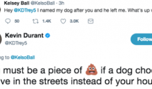 Kevin Durant Claps Back At Twitter Troll Who Named His Dog After Him