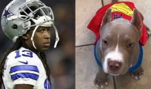 One Week After Dog Kidnapped, Lucky Whitehead Arrested For Stealing & Now Officially Cut By Cowboys