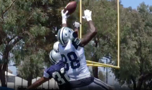 Dez Bryant Makes Incredible One-Handed TD Grab At Training Camp (VIDEO)