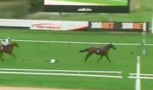 Jockey Tumbles Off His Horse Just As They're Crossing The Finish Line (VIDEO)
