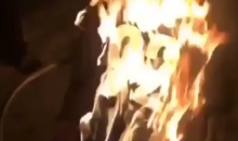 Steelers Fans Are Burning, Throwing Away Their James Harrison Jerseys After He Signed With Patriots (VIDEO)