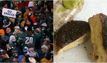 Philadelphia Bakery Bans Boston Cream Doughnuts Ahead of Super Bowl