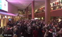 Watch This Bone-Chilling Video of Minnesota Wild Fans Reacting To Vikings TD (VIDEO)