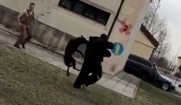 Watch Mark Ingram Get Taken Down by an Italian Security Dog