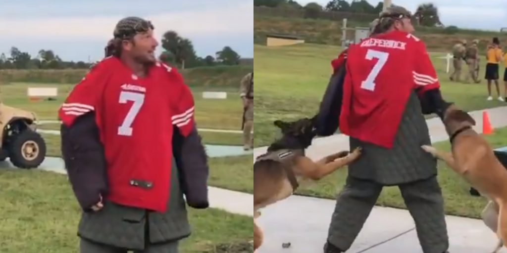 Navy investigates video of dogs attacking Colin Kaepernick fill